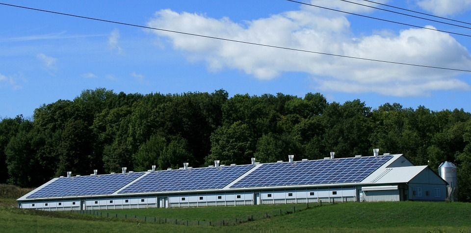 Saulės parkai: ekologiška ir nebrangi elektros energija